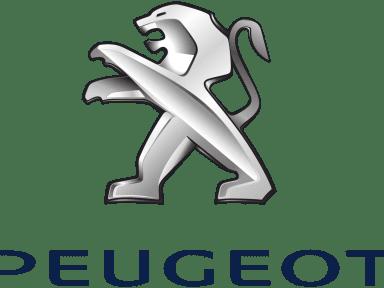 Peugeot Gemy Lorient